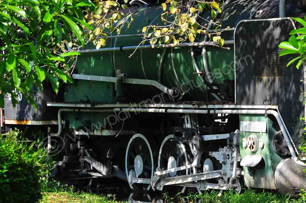 This train will terminate at Rot Fai Park