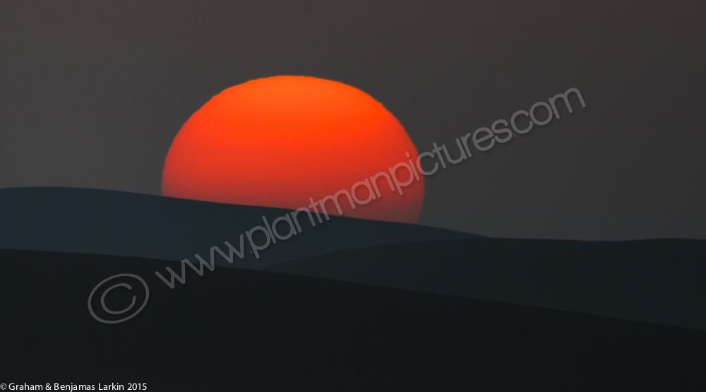 Desert Sunrise over the sand dunes   Khatim Desert