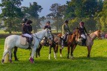 Wentworth Hunt Pony Club