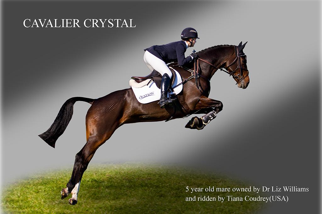 Cavalier Crystal