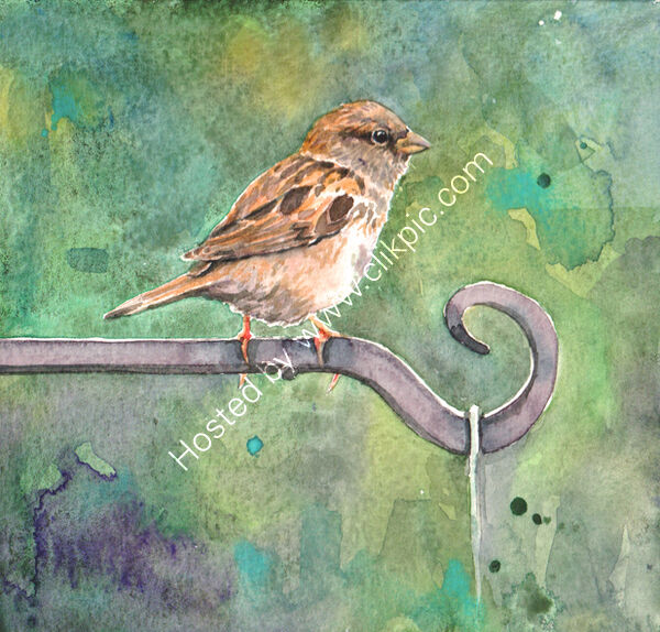 Sparrow on a green background, bird art