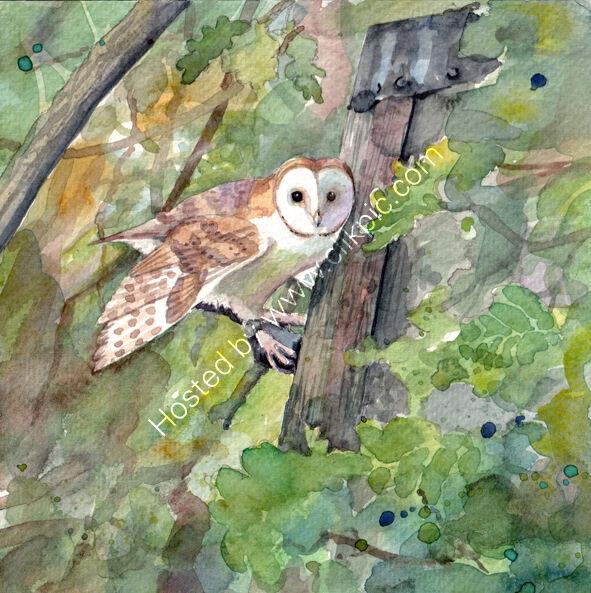 barn owl amongst leaves, bird art