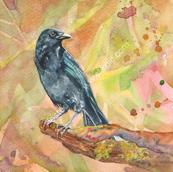 Crow on a branch, pink and orange background, bird art