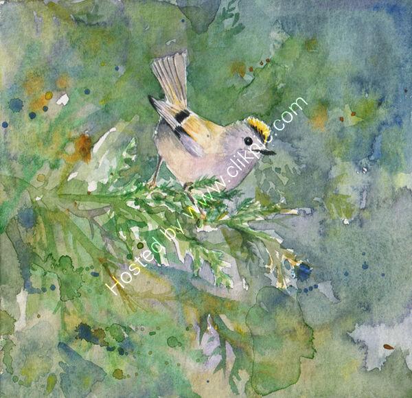 goldcrest on green, bird art