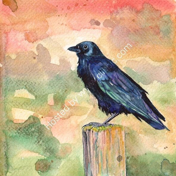 Crow on autumn colour