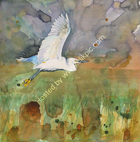 Little Egret watercolour, bird art