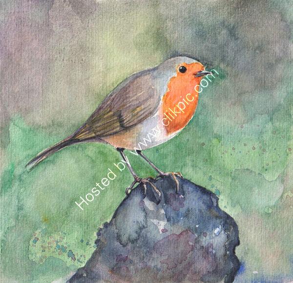 A robin on a dark log, bird art
