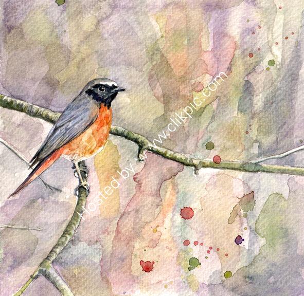 Redstart on a branch, pink, bird art