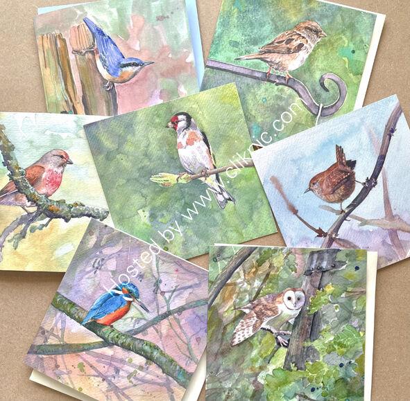 selection of seven bird cards, bird art