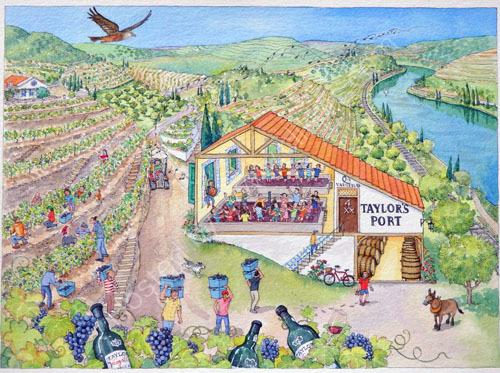 Harvest at Vargellas Vineyard for Taylors Port
