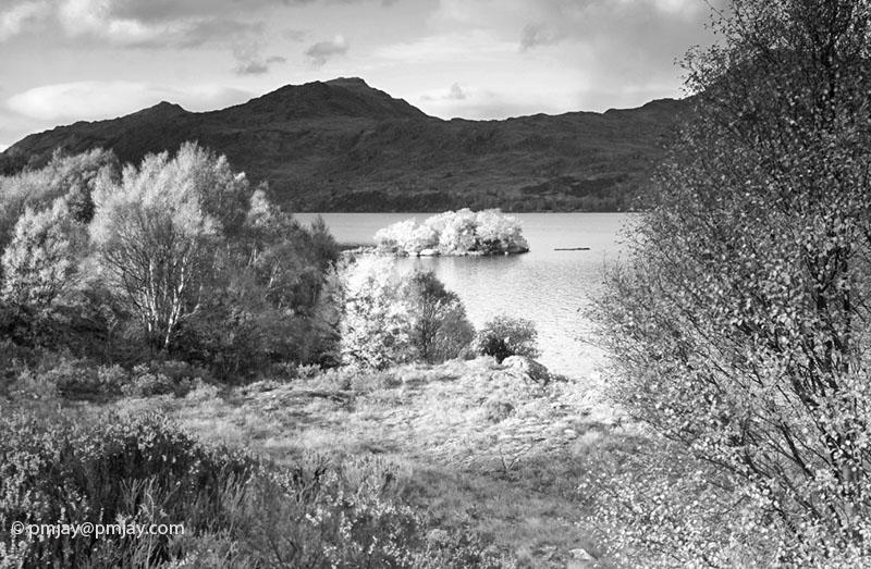 Island off shores of Loch Maree