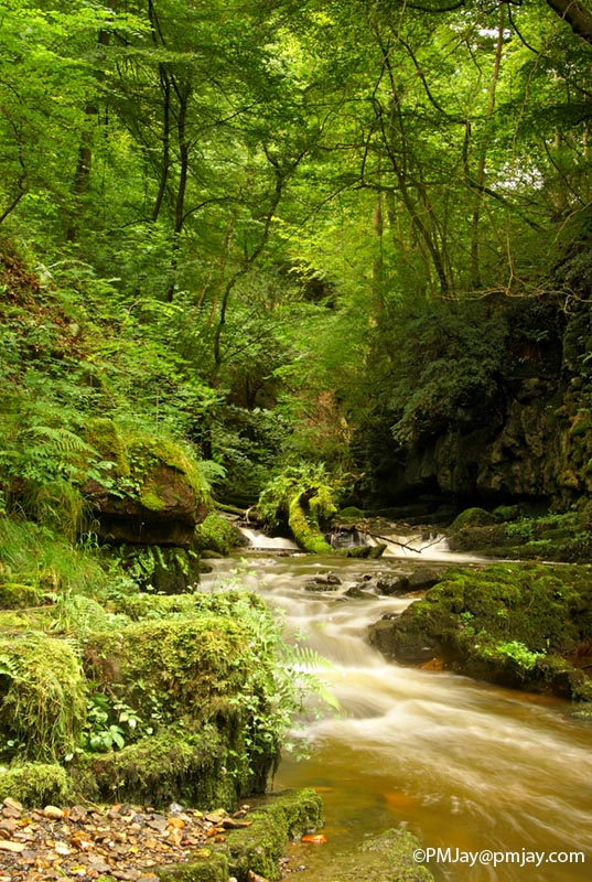 Cwm Clydach National Nature Reserve