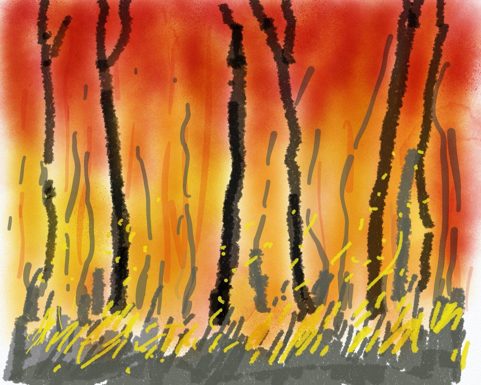 Bushfire 3,  iPad digital