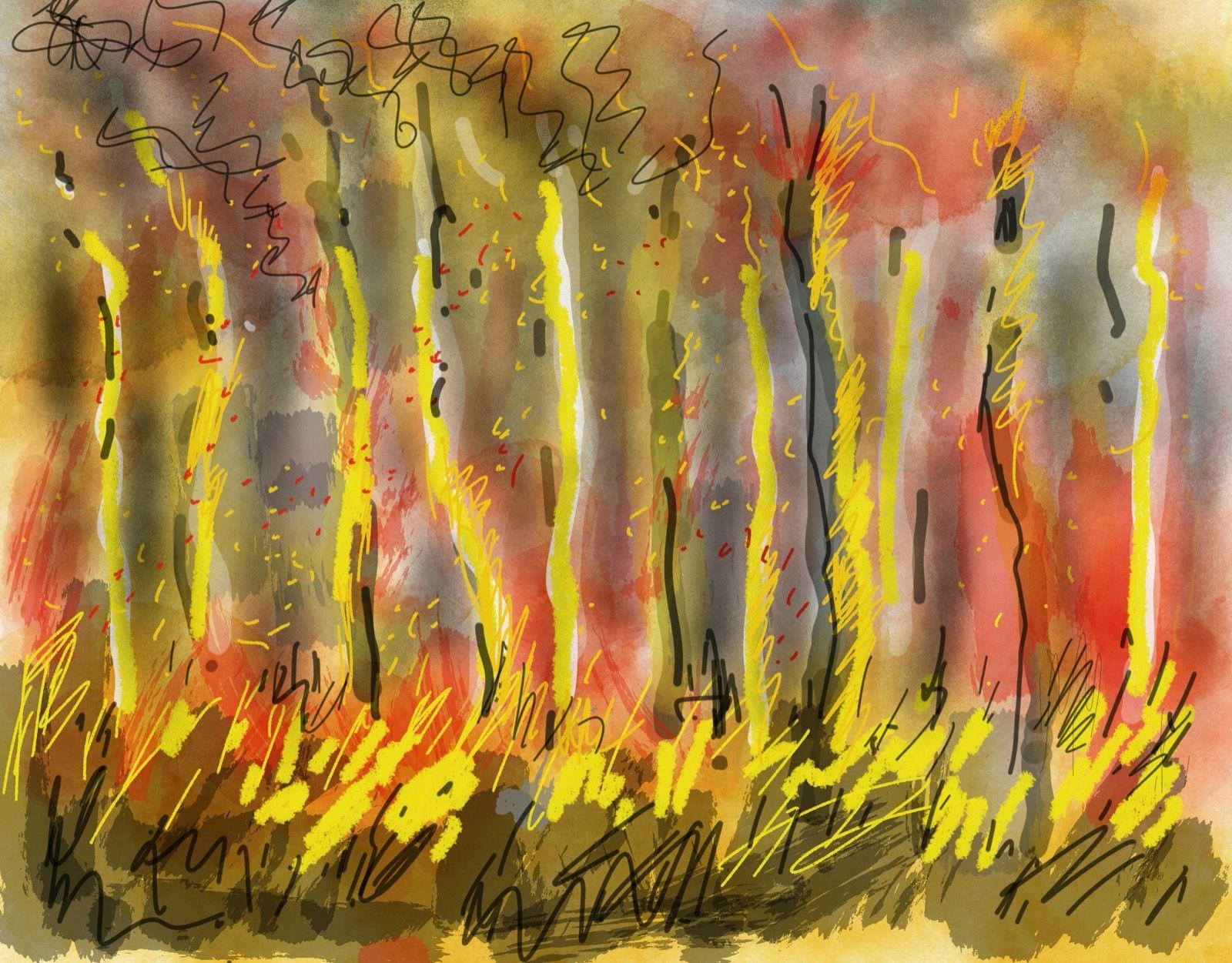 Bushfire 2, iPad digital