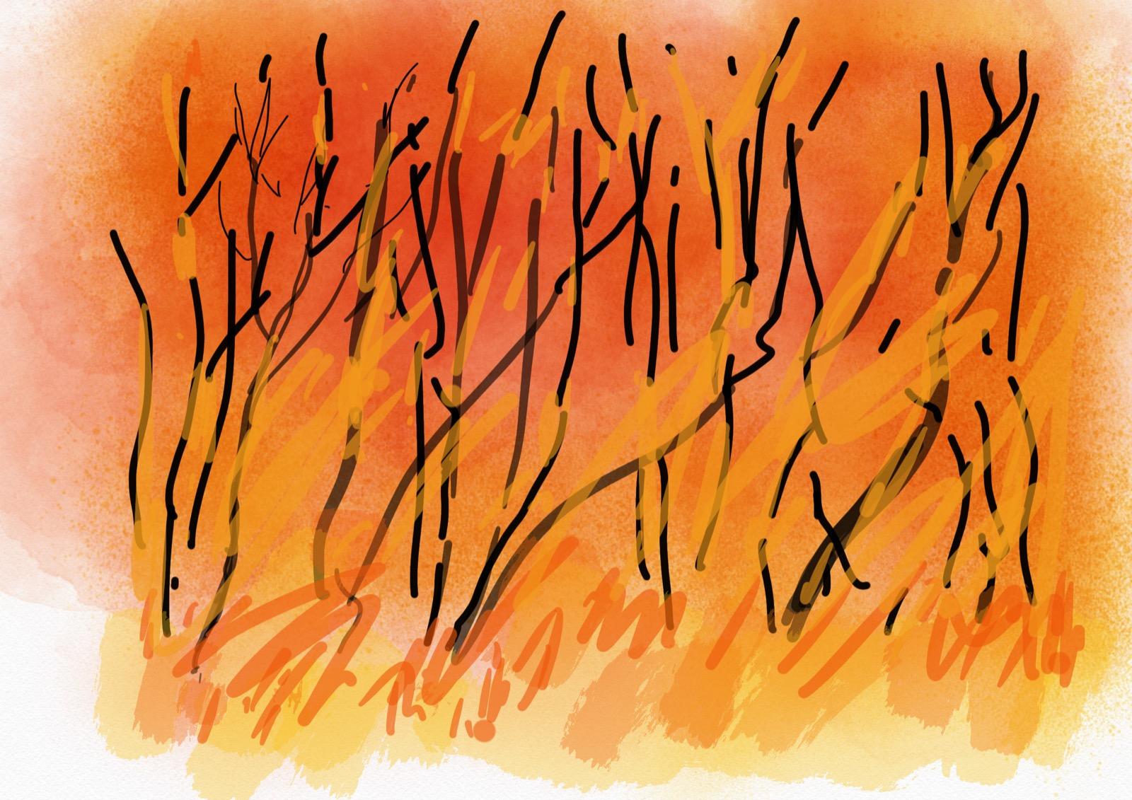 Firestorm 1, iPad digital