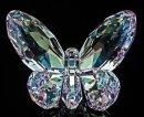 Butterfly by David Kirk
