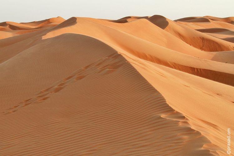 Desert Sands..