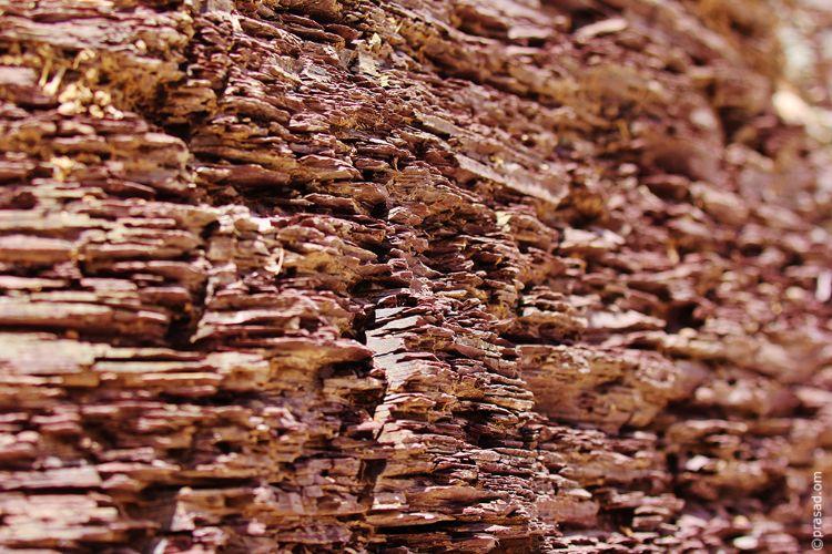 Wall like chocolate slates