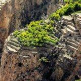 Jebel Akdhar