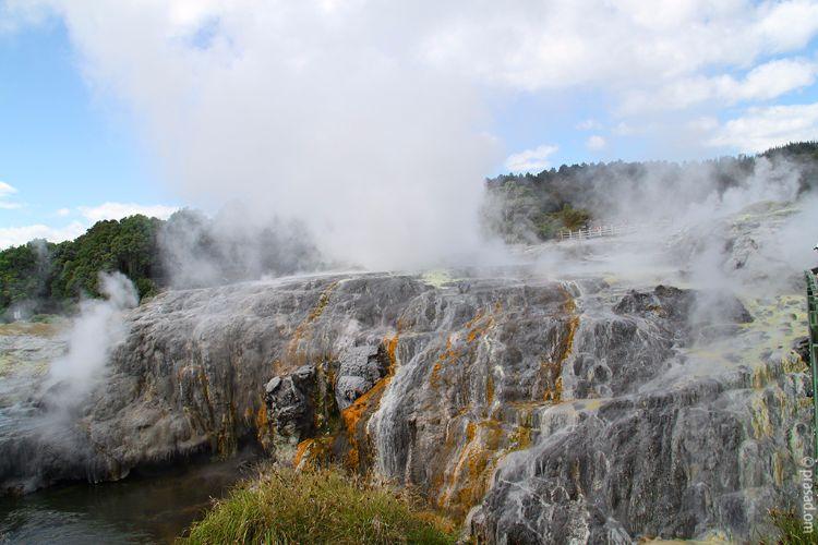 Te Puia geothermal valley, Rotoura, NZ