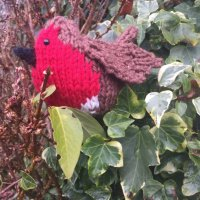 Pink House knitted Robin