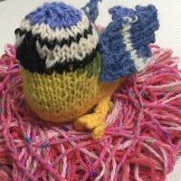 Pink House blue tit on a yarn nest