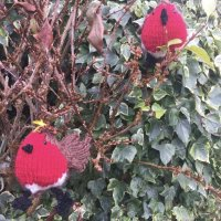 Two Pink House Arts knitted Robins