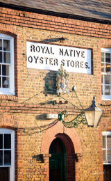 Oyster Stores Code OYS