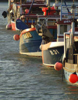 Ramsgate Fishing Fleet Code RFF