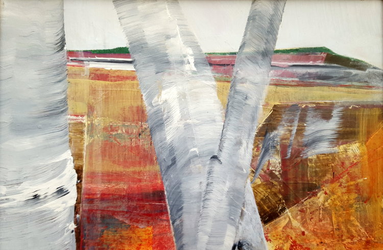 Silver birch 380 x 250