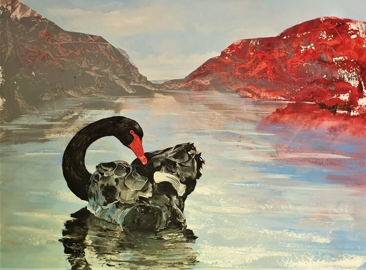 2020 Tasmanian Black Swan 1050 x 750