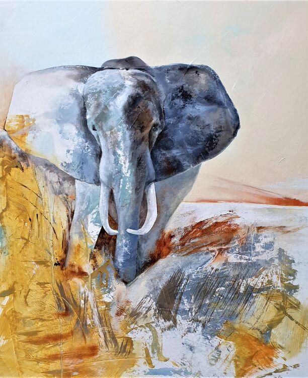 2021 Elephant1 650 x 760 o-b