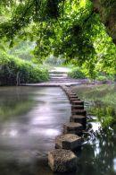 Box Hill Stepping Stones