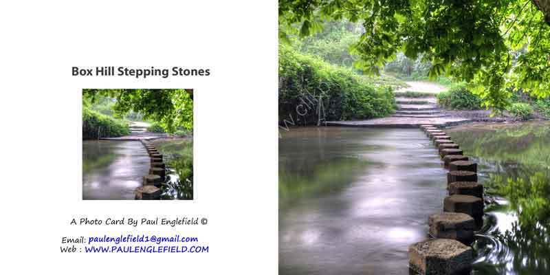 Box Hill Stepping Stones In the Summer