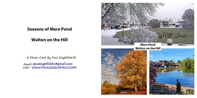 Seasons of Mere Pond