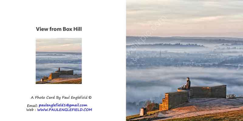 View from the Top of Box Hill