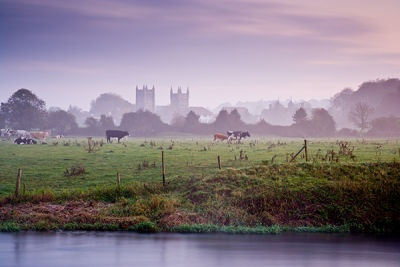 A Misty Morning, Wimborne Minister