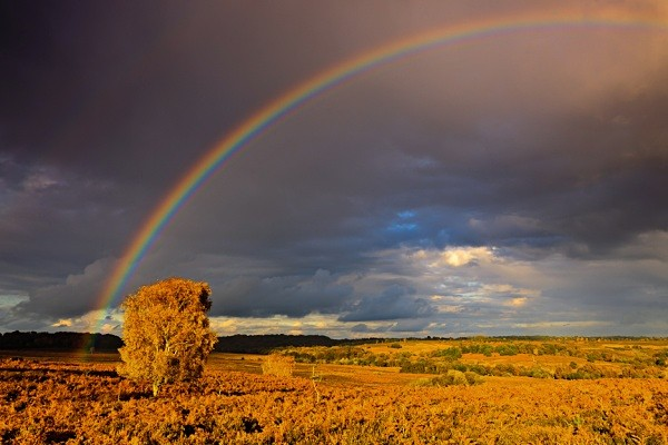 Rainbow, Mogshade Hill