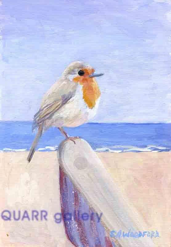 A Beach Robin
