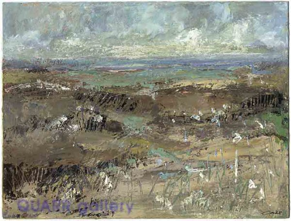From The Dunes, Studland SOLD