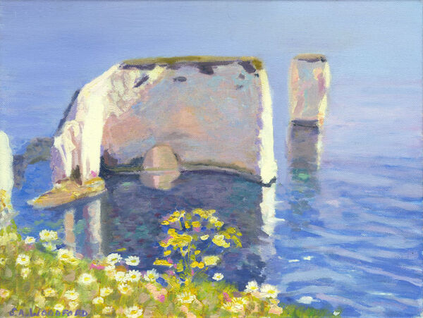Old Harry with Daises