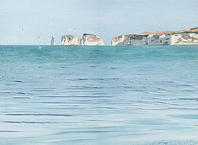 Old Harry Rocks with Seagulls