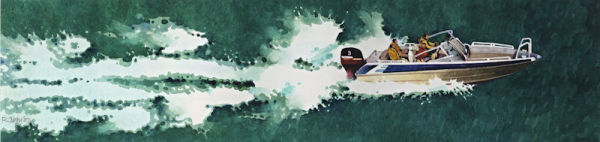 Surf, Spray and Speed