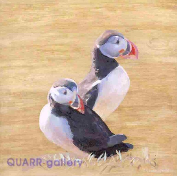 Twin Puffins