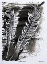 Eagle Feathers. PHOTOGRAM.