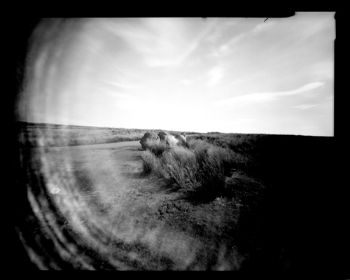 5x4 Pinhole Photography.
