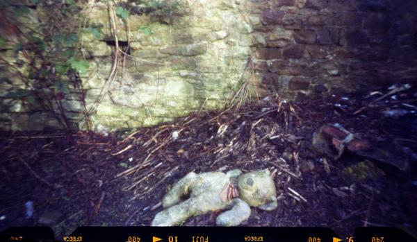Abandoned Bear. 120 film pinhole camera.
