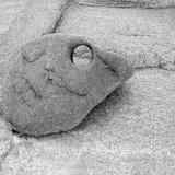 Stone Duck