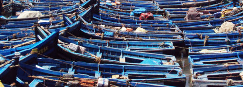 Sardine Boats