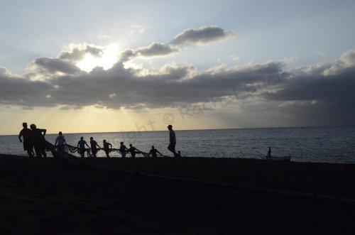 The Catch. La Réunion
